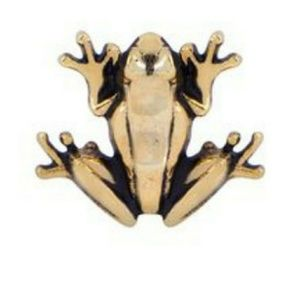 Origami Owl Frog Charm